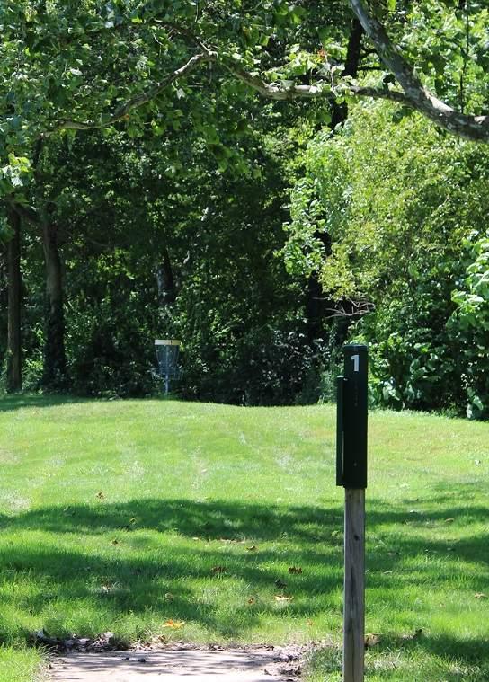 Cumberland Park Disc Hole
